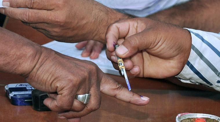 gujarat local body election