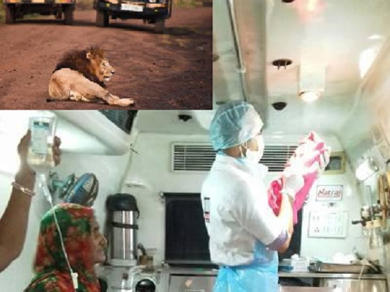 women deliver baby in vicinity of Gir forest surrounded by lions