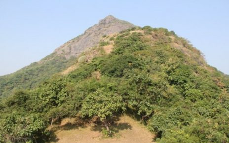 Junagadh lili parikrama at feet of Mount Girnar