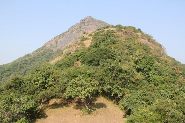 Junagadh lili parikrama at feet of Mount Girnar