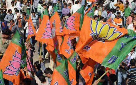 bjp wins in gujarat election