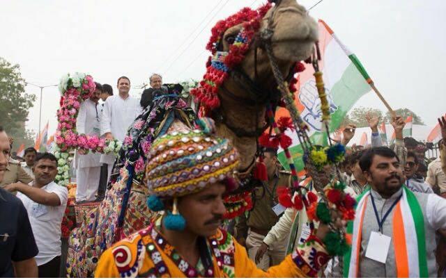 rahul gandhi camel cart