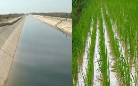 no water in summer for crops says gujarat cm
