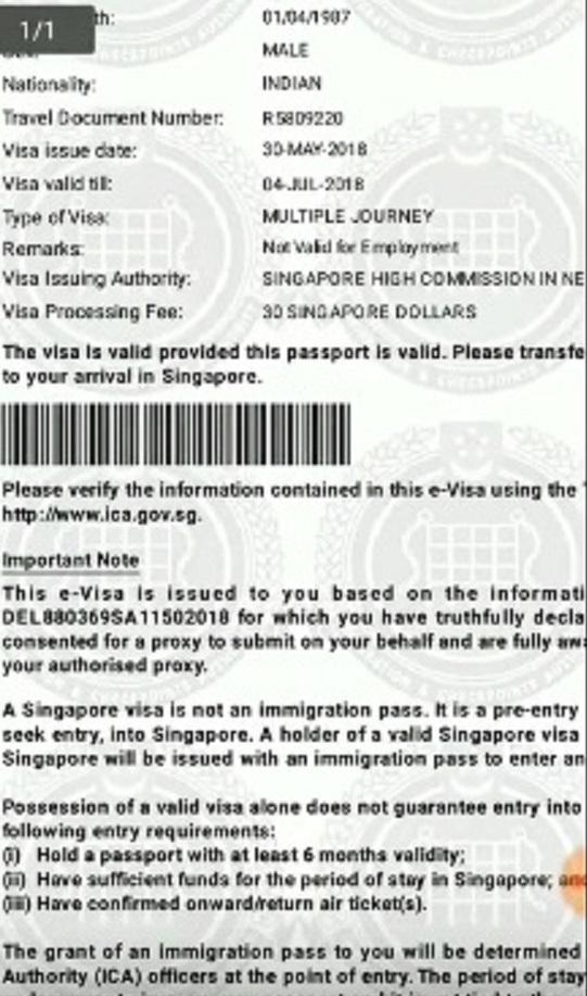 e visa singapore