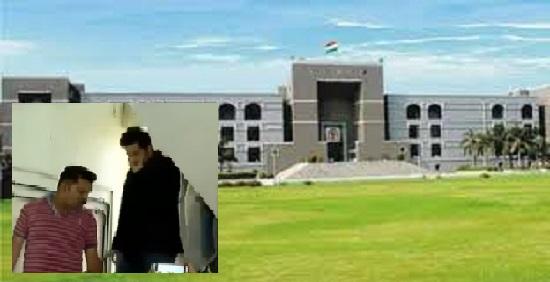 high court vismay shah