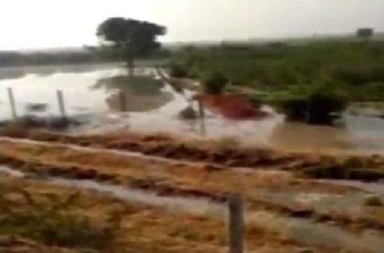 surendranagar water waste