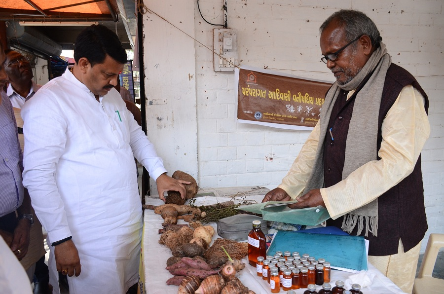 traditional herbs exhibition