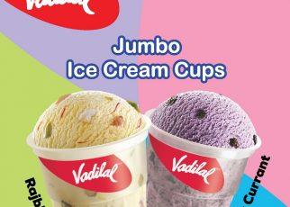 vadilal icecream